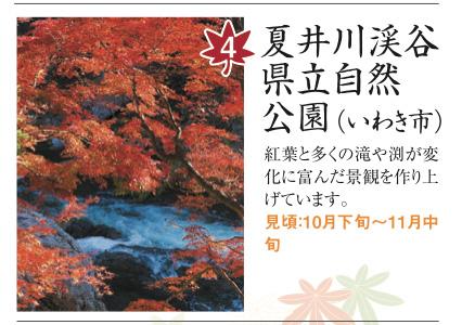 http://hanabana.hotelhananoyu.jp/images/information/2017/20171017-1.jpg