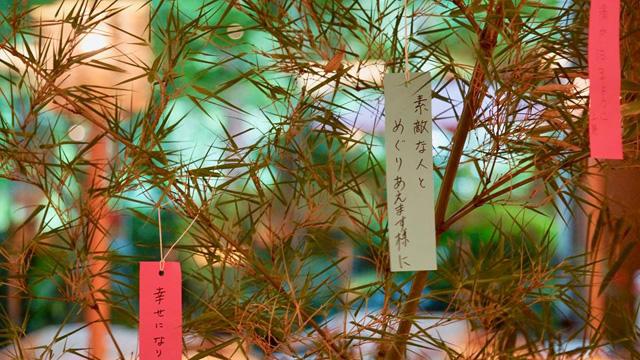 http://hanabana.hotelhananoyu.jp/images/information/2018/20180628-3-1.jpg