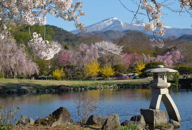 http://hanabana.hotelhananoyu.jp/images/information/2019/20190415_2-2.jpg